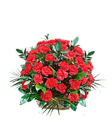 траурная корзина из живых цветов №5